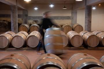 Domaine viticole près de Bordeaux